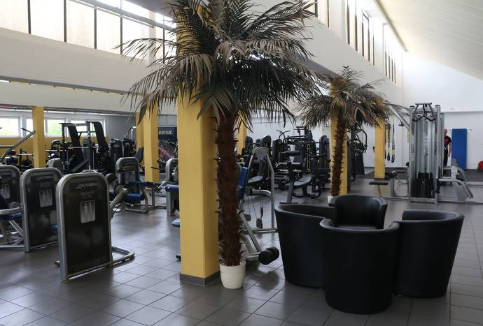 VITA VITAL Fitnessstudio Palmen und Geräte