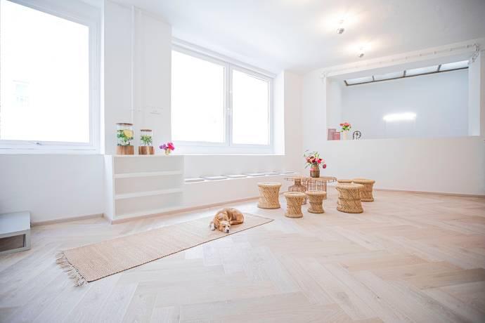 yoga, kurs, studio, stuttgart, loft