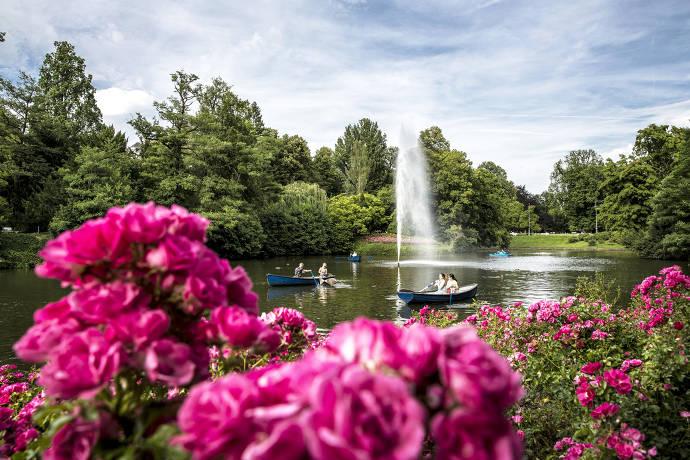 Kurpark, Wiesbaden, Blumen, Brunnen