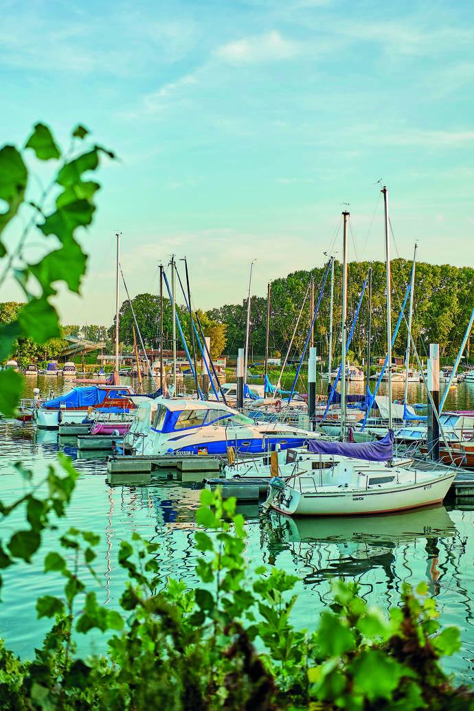 Hafen, Boote, Schierstein, Wiesbaden, Rhein