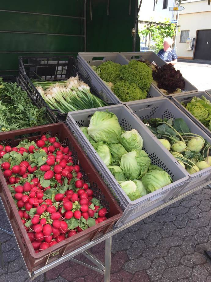 Radieschen, Salat, Kohlrabi und vieles mehr