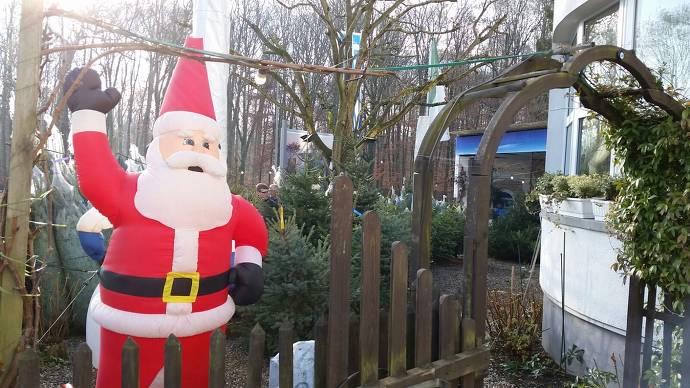 Weihnachtsbaumverkauf vor Ort