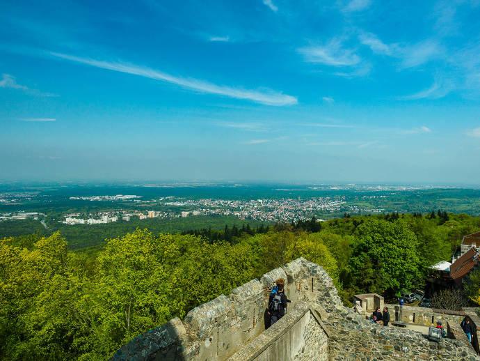 Burg, Aussicht, Wald, Natur, Menschen
