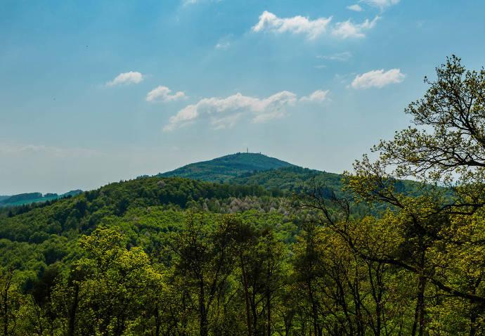 Aussicht, Wald, Natur, Berg