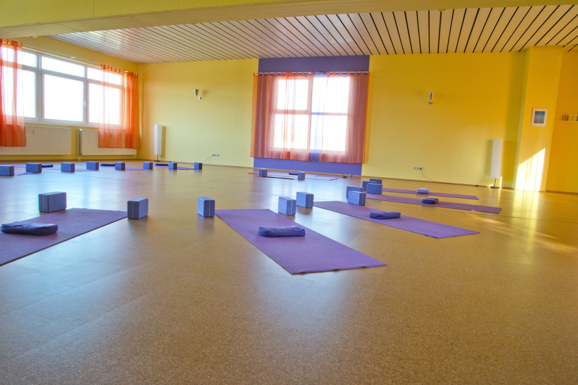 TriYoga Center