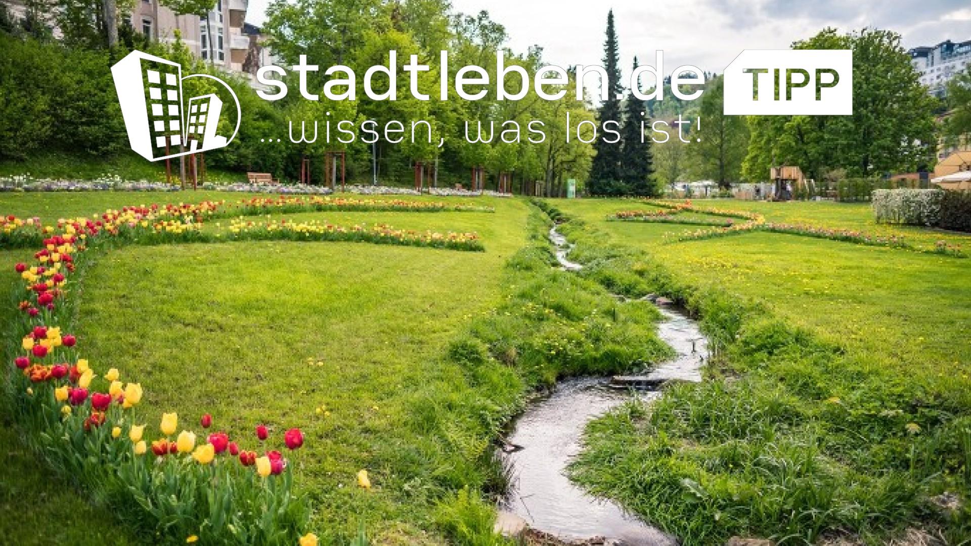 Bad Schwalbach, Kurpark, Bach, Wiese, Blumen, Tulpen