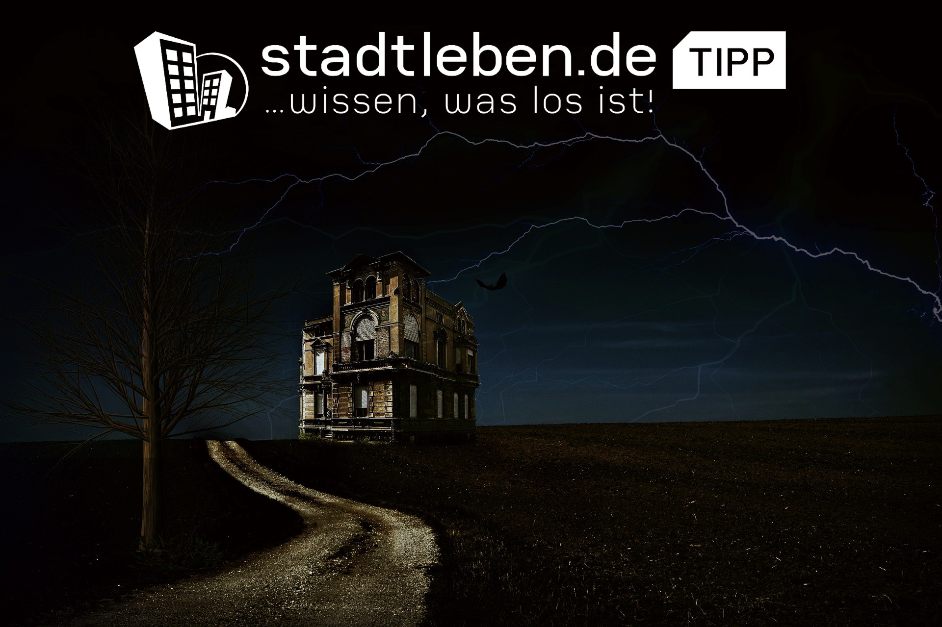 Haus, Ruine, Dunkel, Nacht, Baum, gruselig, Deutschland, Halloween