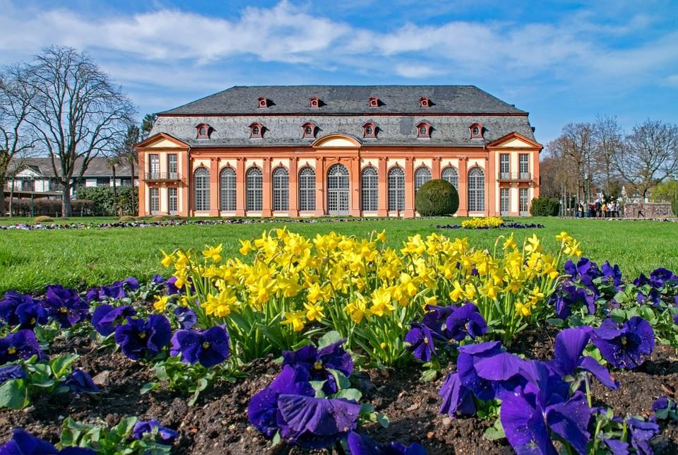 Darmstadt, Hessen, Frühling, Blumen, Orangerie, Garten, Schloss, Sehenswürdigkeit