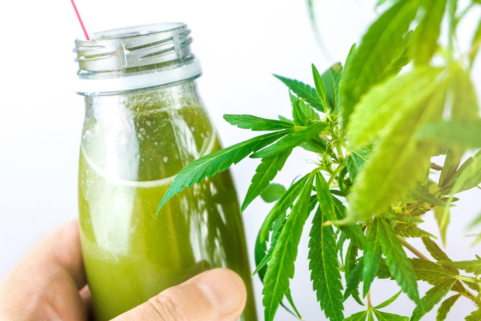 Cannabis weist medizinisches Potential auf