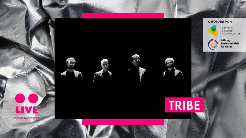 Tribe, Schon Schön