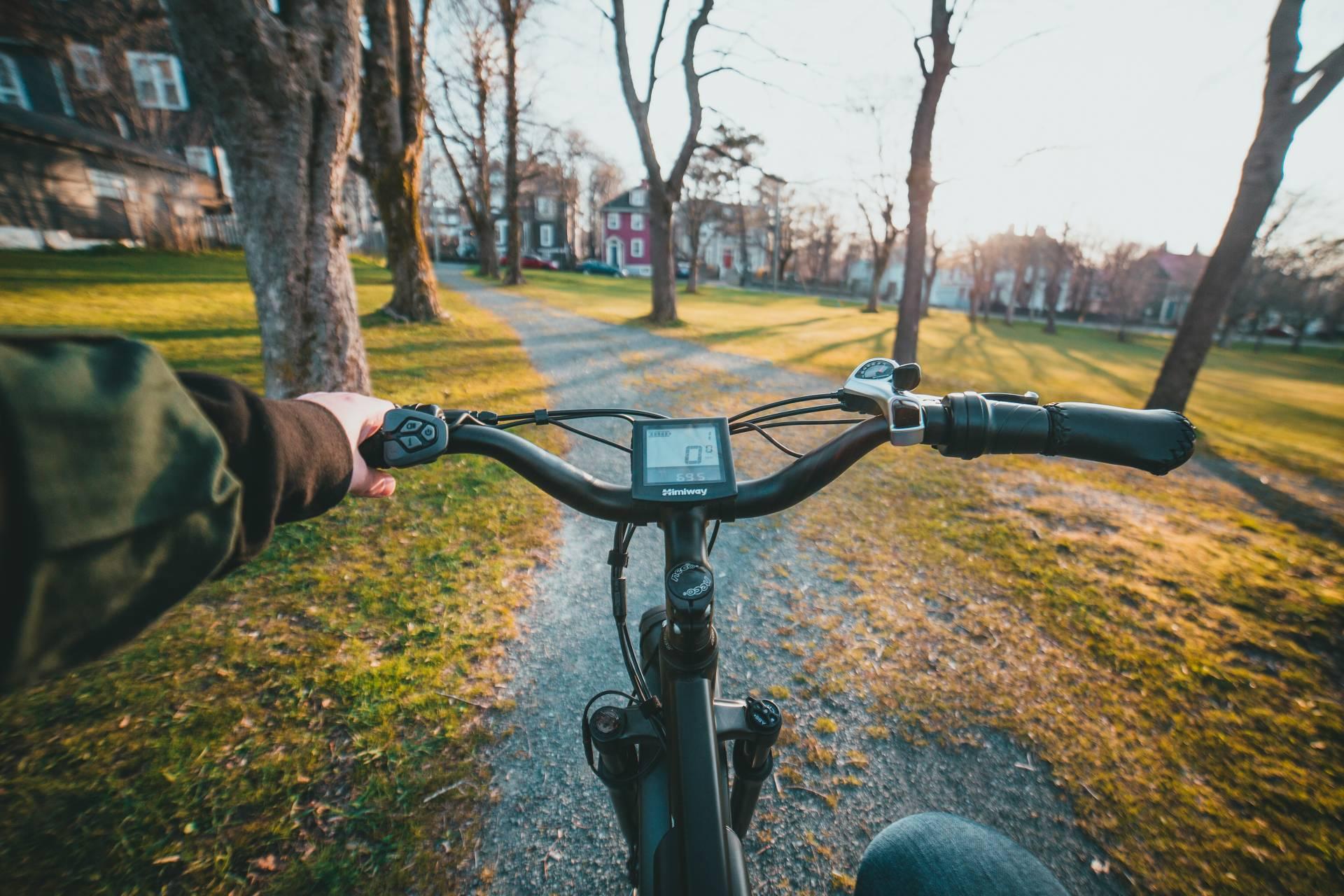 Mann fährt auf Fahrrad durch Allee mit Bäumen in der Sonne